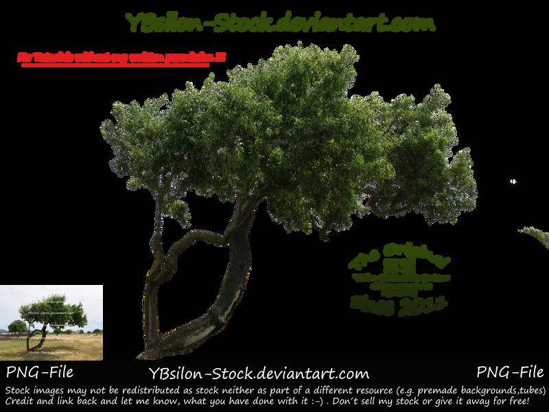 Unusual Green Tree by YBsilon-Stock by YBsilon-Stock