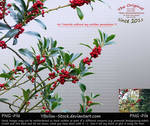 Branches with red berries by YBsilon-Stock
