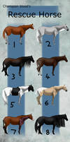CB   Rescue Horses (Draw to claim) 1/8 open!