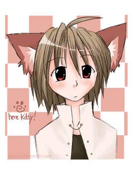 here kitty