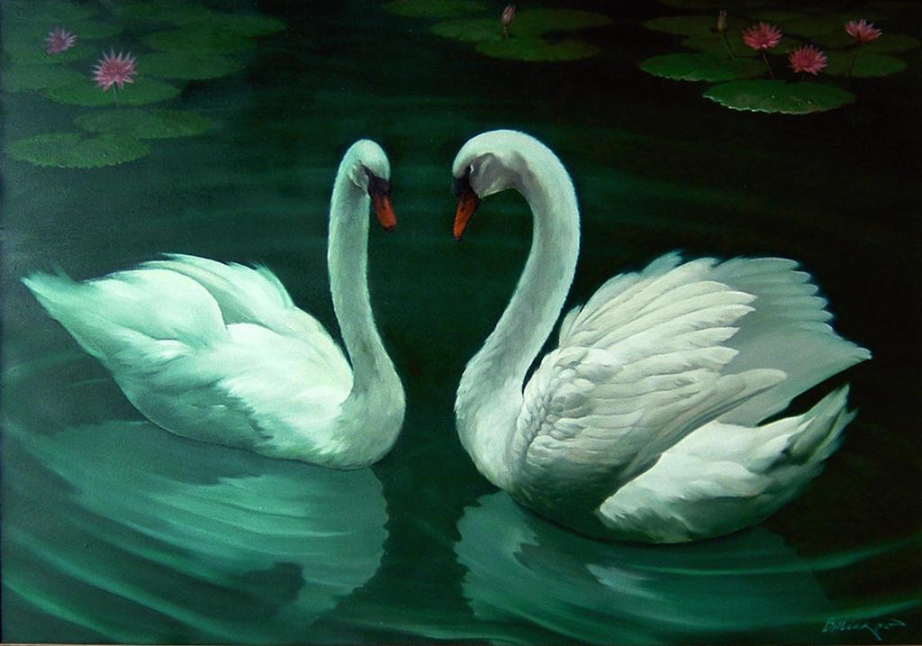 A pair of white swans by BambangMiyarso