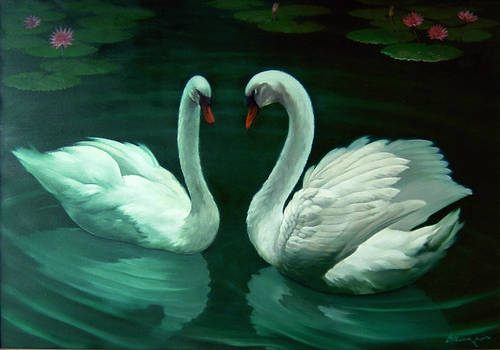 A pair of white swans