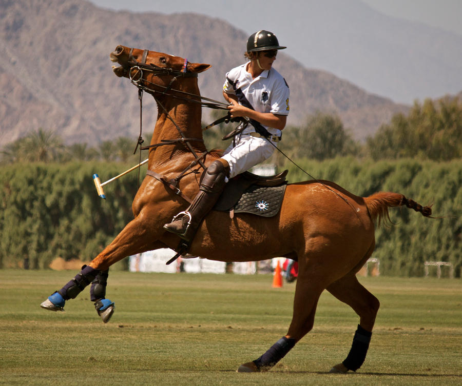 El Dorado Polo Club: Governor's Cup by ThePerfectEquestrian