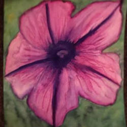 Watercolor Petunia (practice with watercolor) by Sarah-The-Lion-Wolf