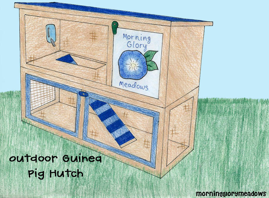 Outdoor guinea pig hutch by morningglorymeadows on deviantart for How to build a guinea pig hutch