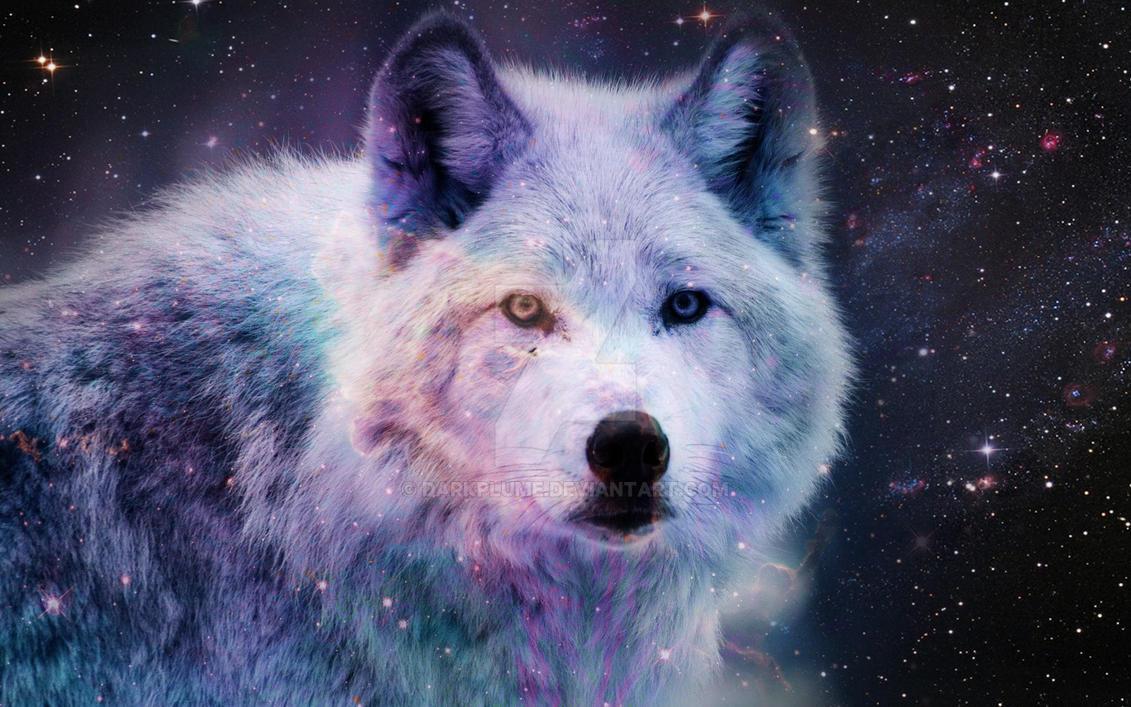 Galaxy Wolf Reloaded (? By Darkplume On DeviantArt