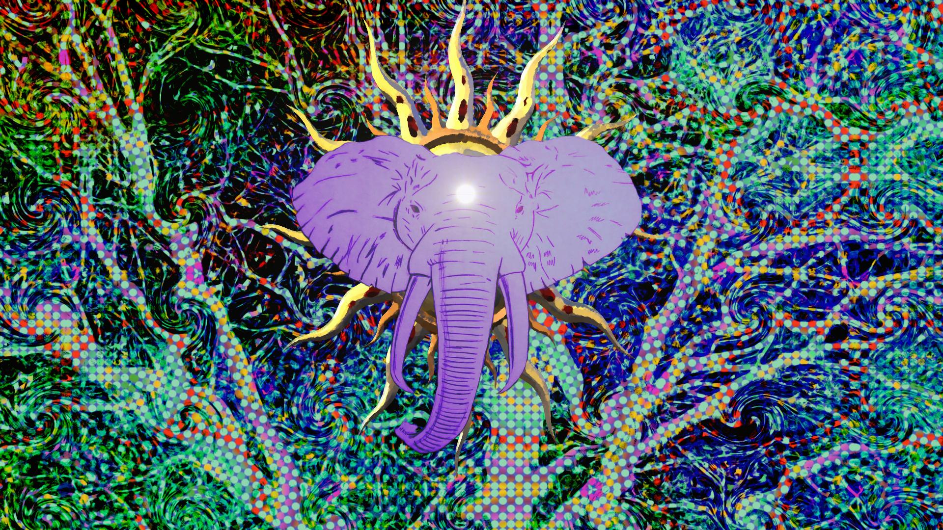 Elephant Revival Tour Portland