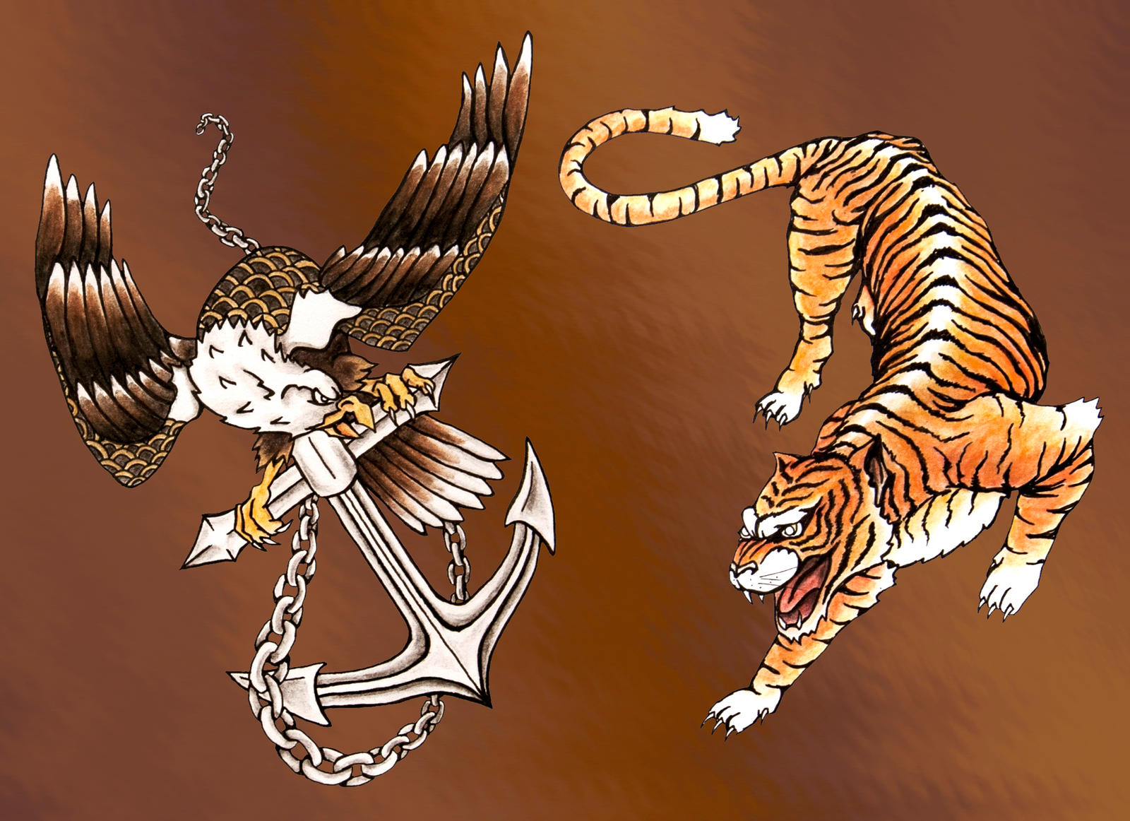 tigers vs warriors - HD1600×1162