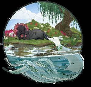 TWWM: A waterside greeting