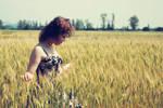 Free in golden field