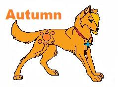 Autumn by the-season-wolf19962