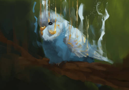 Disappearing budgie