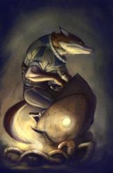 Under Fire Fox
