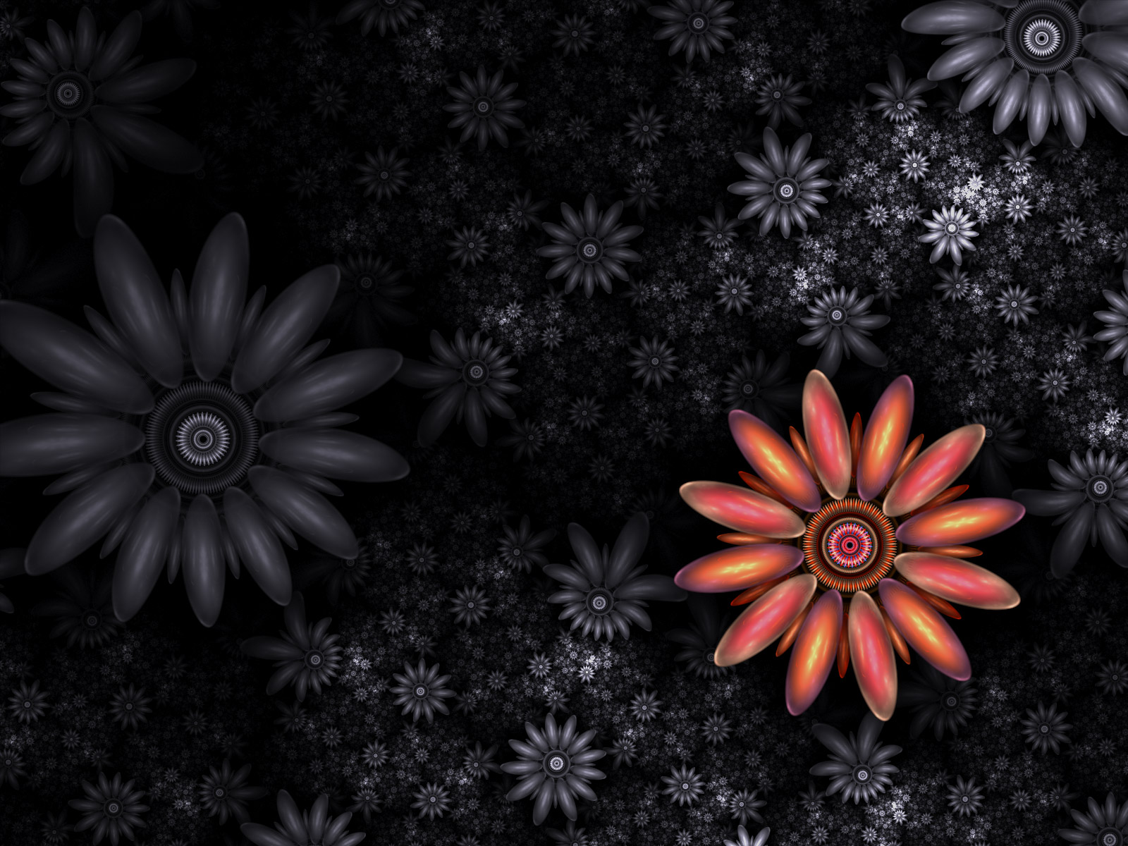 Fractal Flowers WP by parrotdolphin