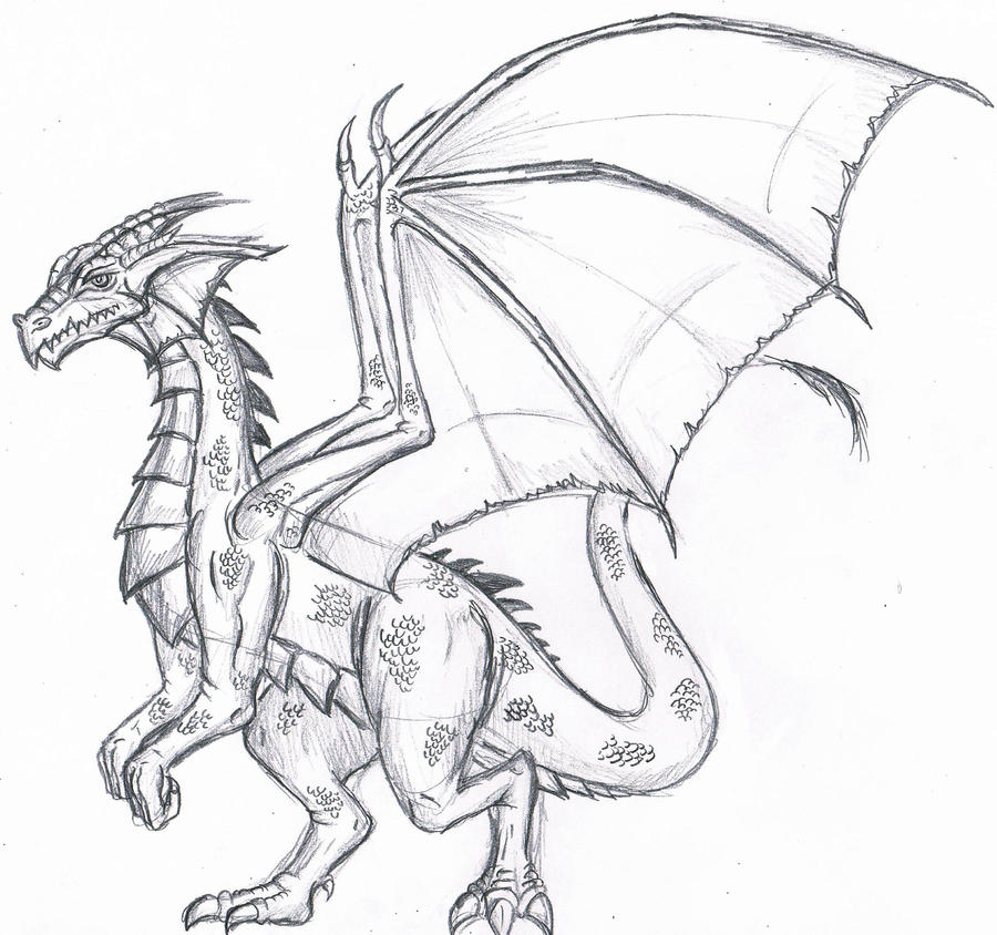 Dragon Sketch by WforWumbo