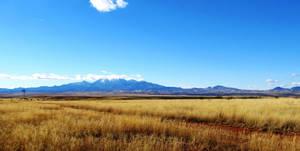 Mt Wrightson, Prairie Grass and Water Pump