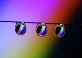 Catch the Rainbow by Phenix59