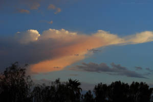 Glimmer of Sunrise by Phenix59