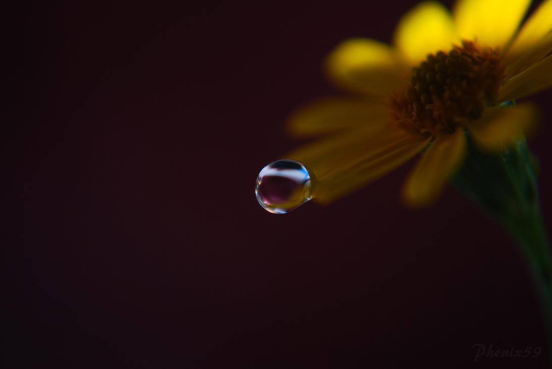 Darkness Falls by Phenix59