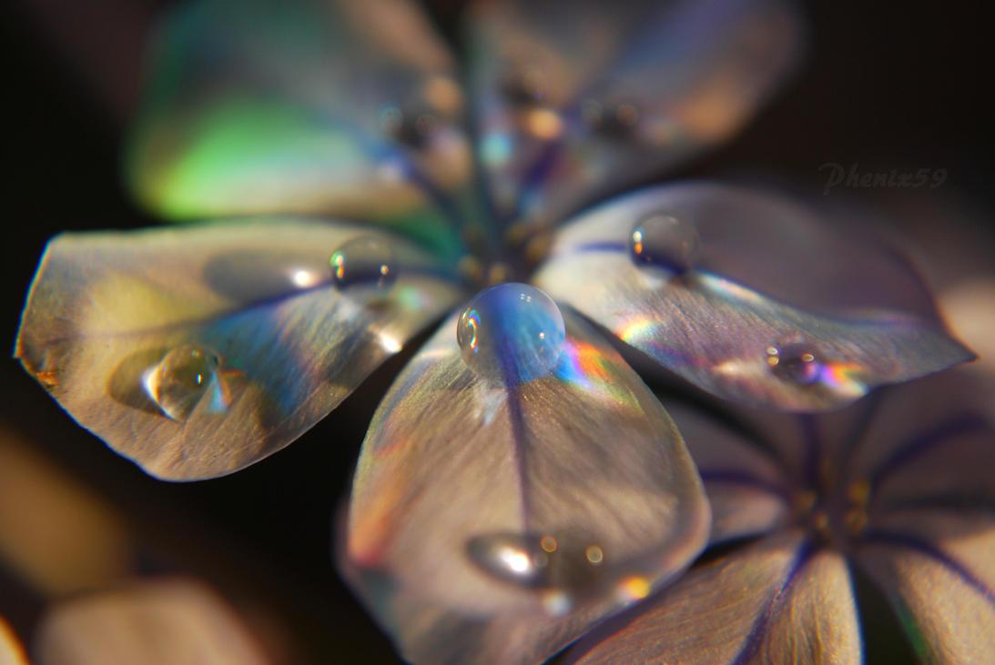 Little Blue World by Phenix59