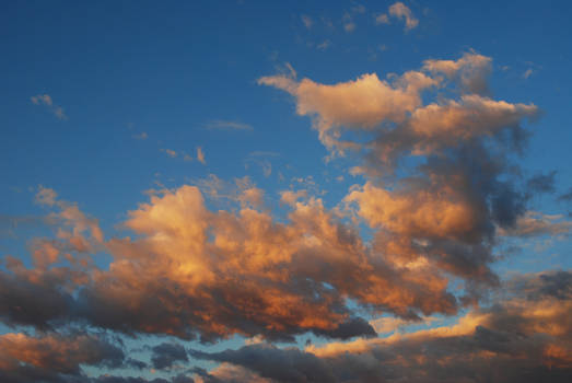 Cloud Stock 4635