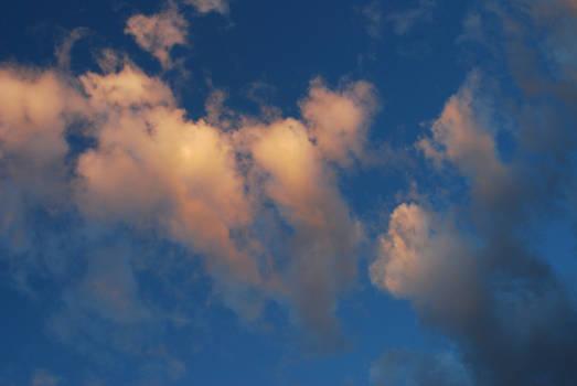 Cloud Stock 4631