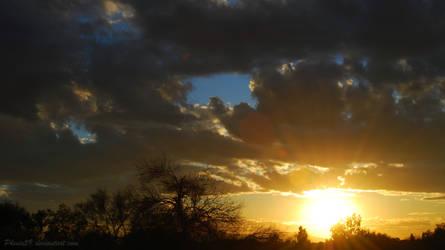 Leap Year Sunset