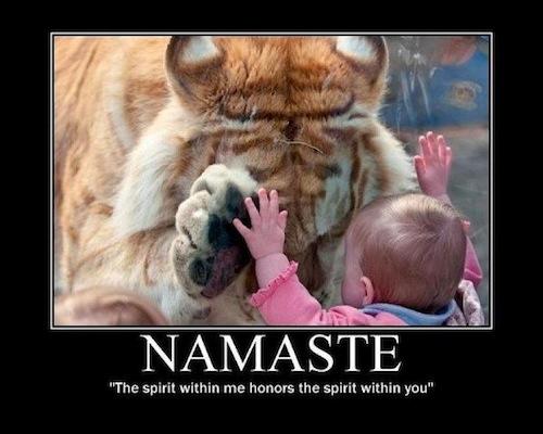 namaste_by_theatrenewt d4ph1y2 namaste by elementaljess on deviantart,Namaste Meme
