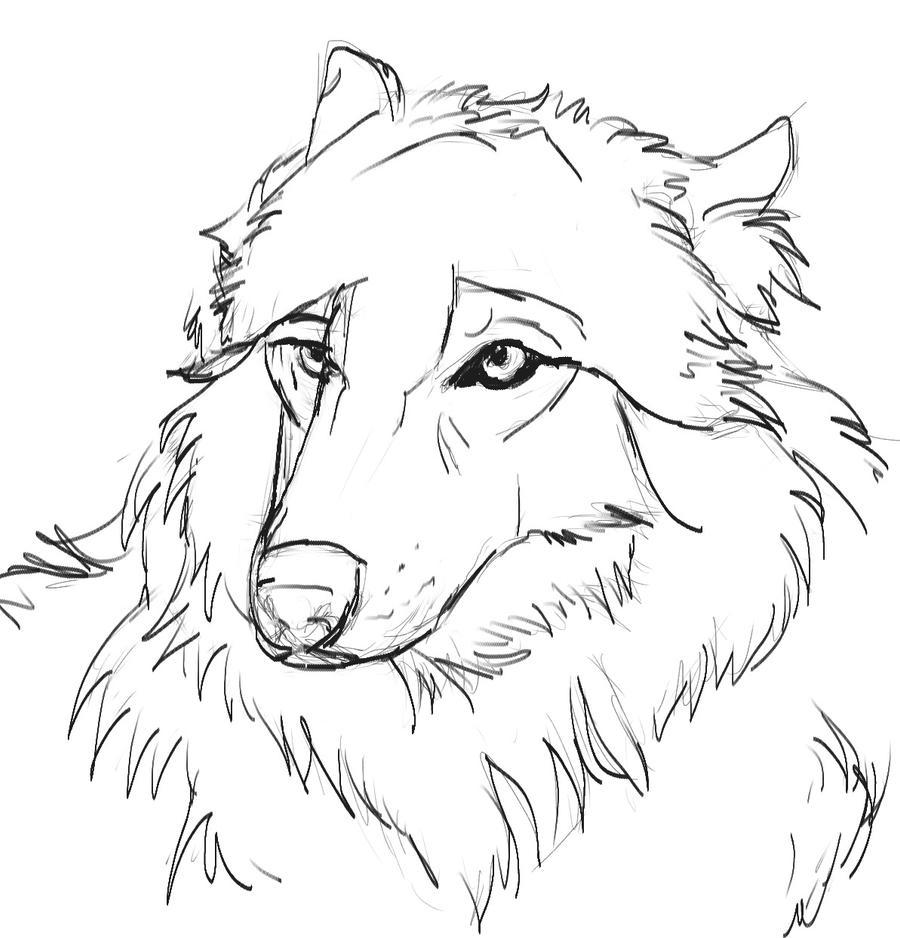 Line Drawing Wolf : Wolf line art by elementaljess on deviantart