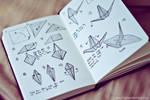 Origami Folding Instructions