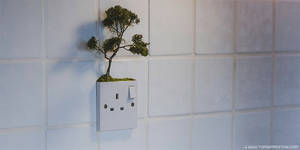 The Tiny Trees Project 00005 by TomSimmonds