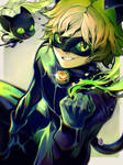 Chat Noir from Miraculous Ladybug