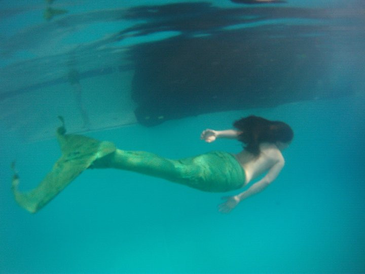 Image Result For Fin Fun Mermaid