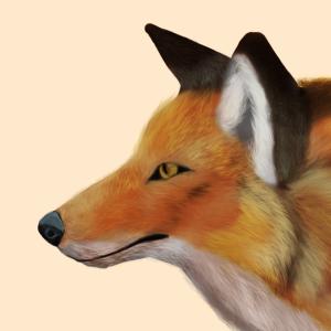 Vuele's Profile Picture