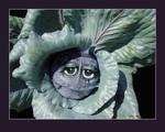 Emotional Cabbage