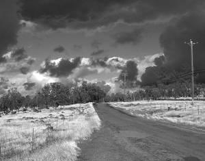 Road to Cloudville