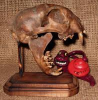 Fossil Cat Skull Gaff by DETHCHEEZ