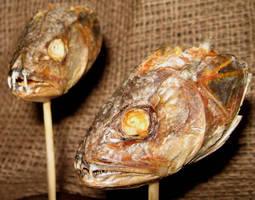 Rare Peruvian Vampire Fish 3 by DETHCHEEZ