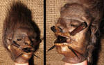 Pygmy Shrunken Head Gaff 3