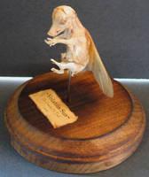 Mummified Flying Pig Gaff 4 by DETHCHEEZ
