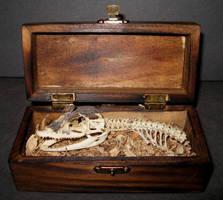 Baby Dragon Skeleton Gaff 1 by DETHCHEEZ