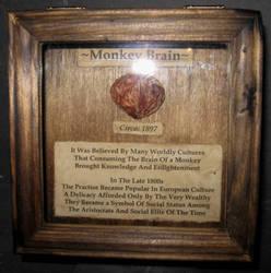 Mummified Monkey Brain 1 by DETHCHEEZ