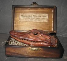 Mummified Alligator Head Gaff by DETHCHEEZ