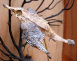 Bird Fish 3