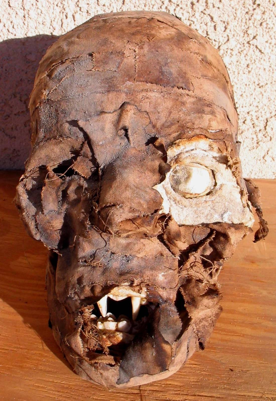 Mummified Head Of Vlad Dracula by DETHCHEEZ