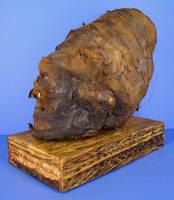 Peruvian Mummy Head 2 by DETHCHEEZ