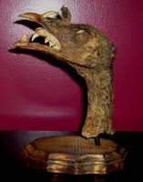 Bizarre Devil Turkey Head 4 by DETHCHEEZ