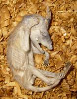 Bizarre Mummified Fetus Gaff 3 by DETHCHEEZ