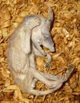 Bizarre Mummified Fetus Gaff 3