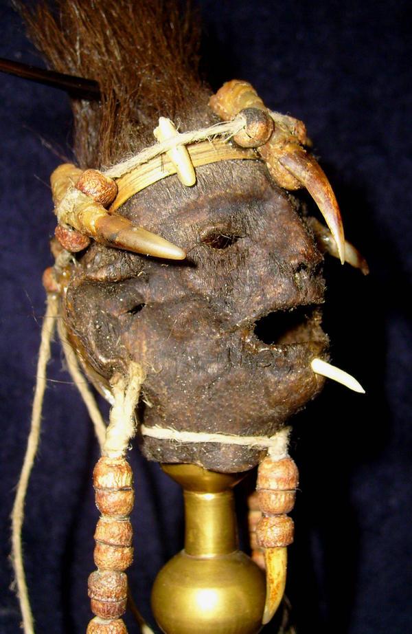 Pygmy Warrior Tsantsa 5 by DETHCHEEZ